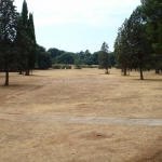 golf_croatia_brijuni