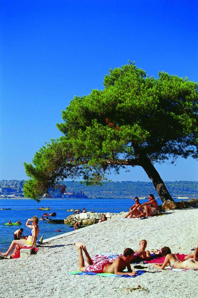 Camping Istria Travel Guide Porec Croatia Math Wallpaper Golden Find Free HD for Desktop [pastnedes.tk]